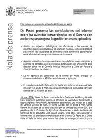 Image rapport De Pedro version espagnol
