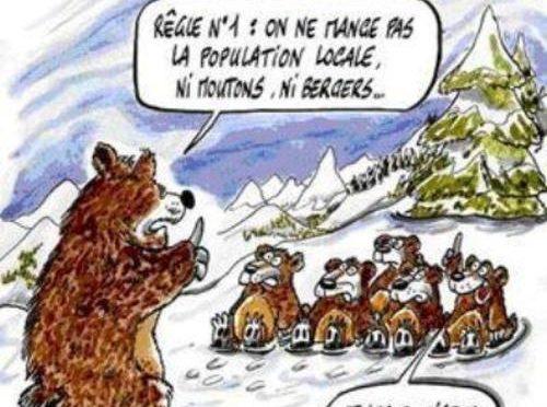 L'ours … encore